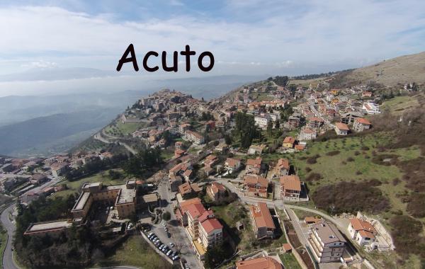 Acuto